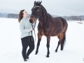 Hästporträtt, Fotograf Evelina Eklund Hassel i Jönköping, Småland