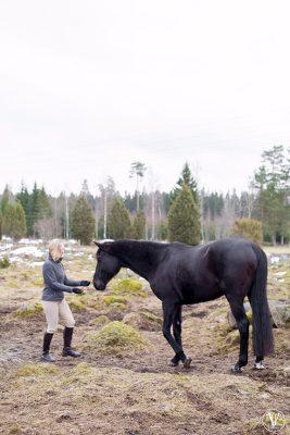 Hästfotograf, Fotograf Evelina Eklund Hassel i Jönköping
