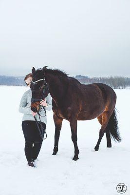 Porträttfoto Häst, Fotograf Evelina Eklund Hassel i Jönköping och Karlstad